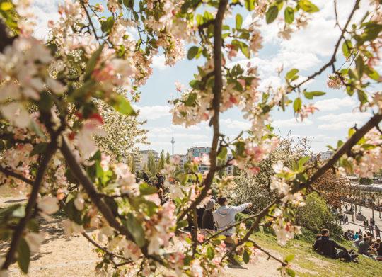 Berlin Frühling